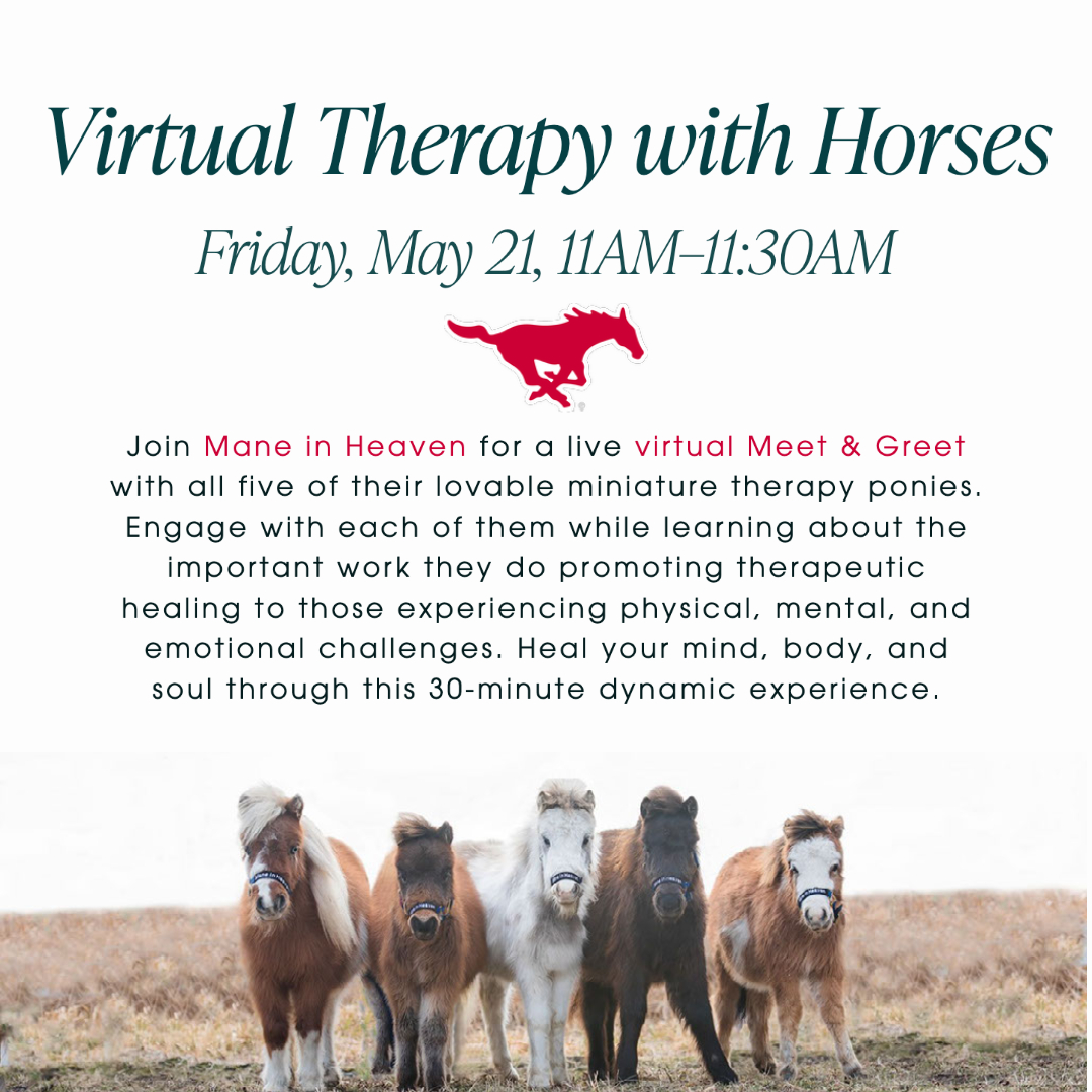 SMUSA STAFF APPRECIATION WEEK: Virtual Therapy with Horses