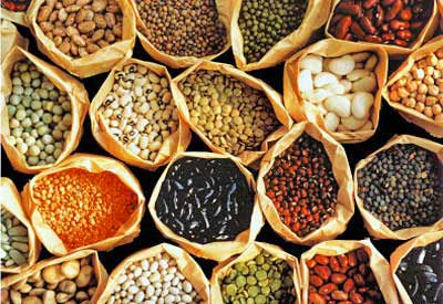 Master Gardener Seed Giveaway and Exchange