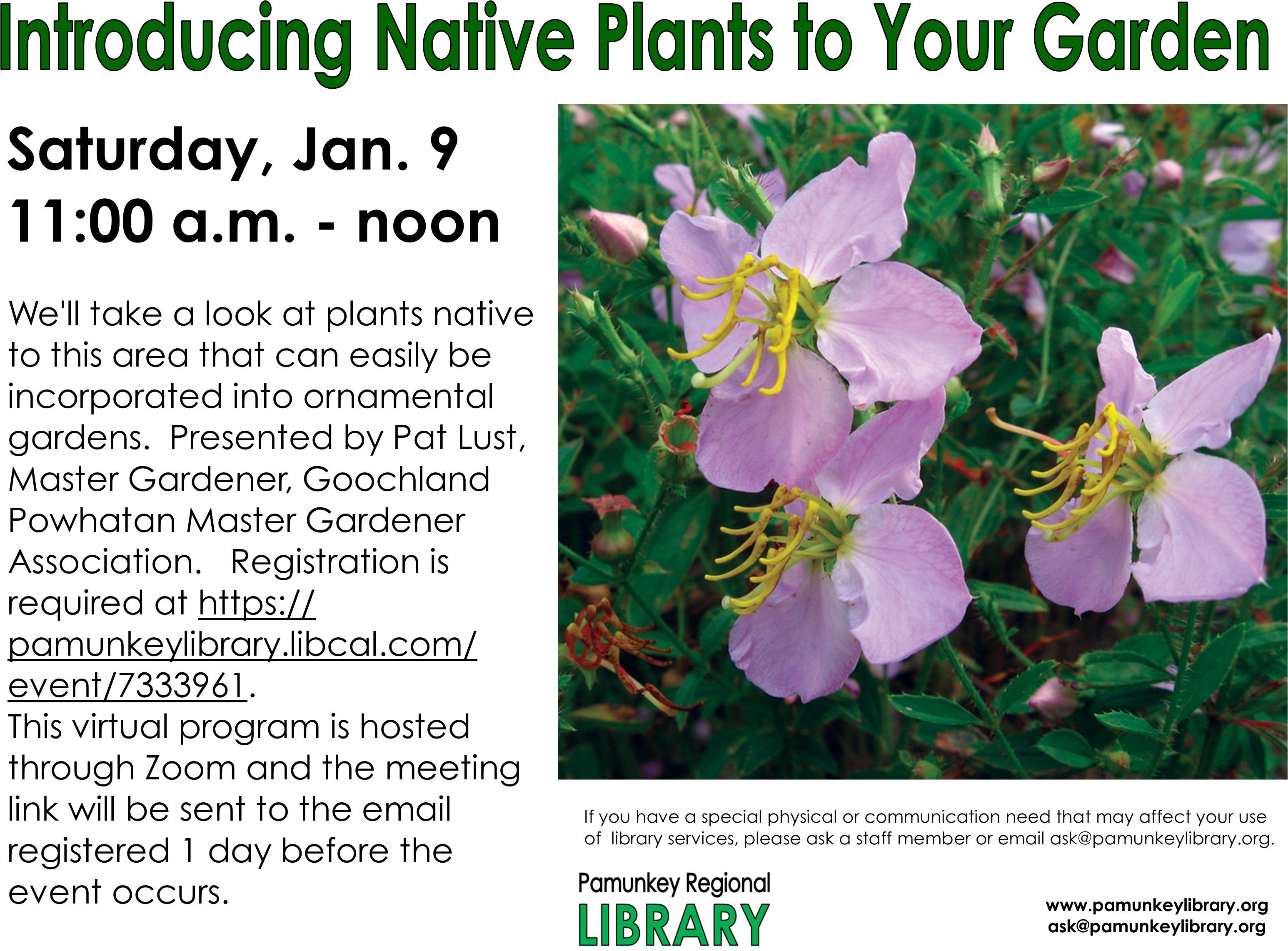 VIRTUAL - Introducing Native Plants into Your Traditional Garden