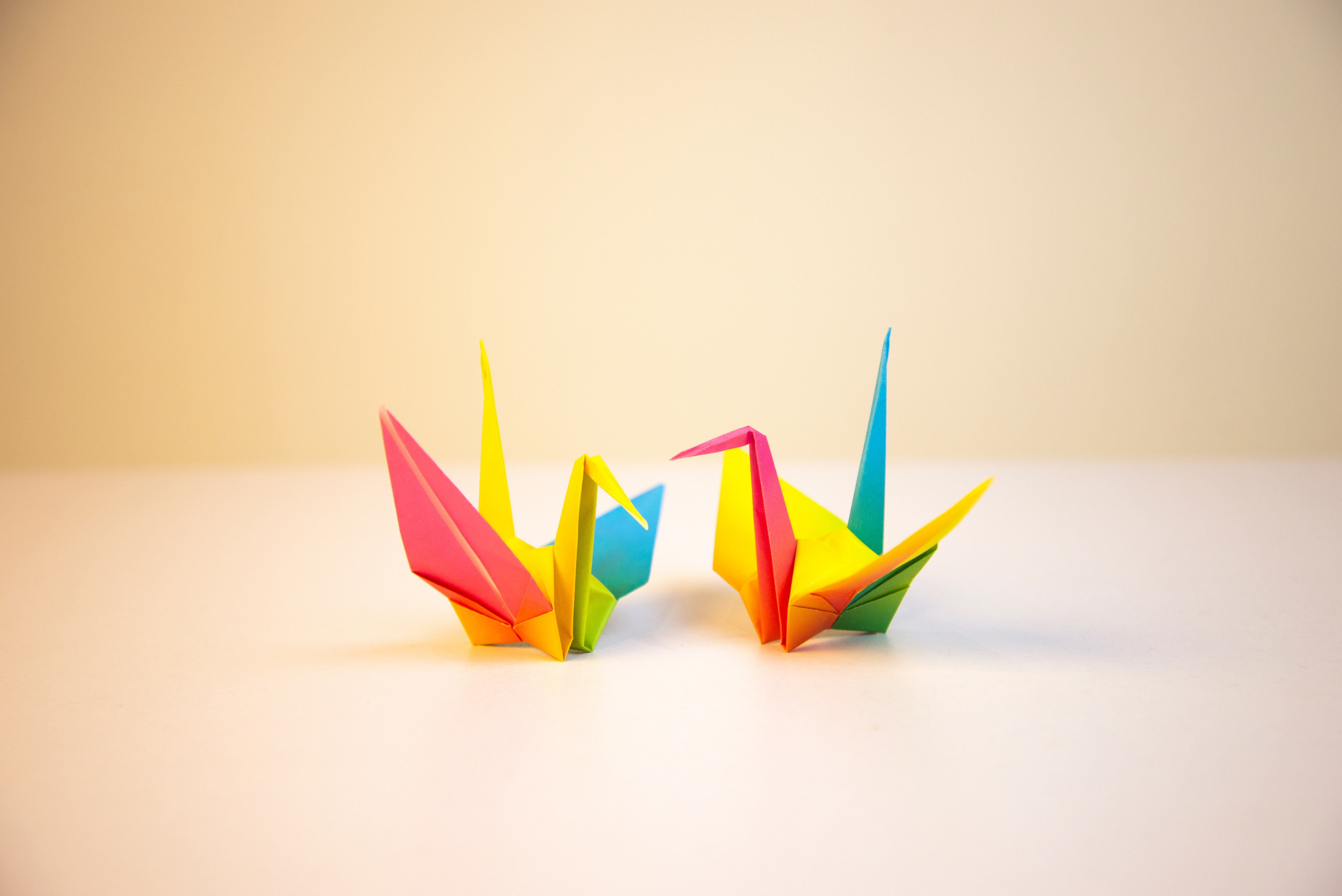 Origami with Ella DeBakker (Ages 7-10)