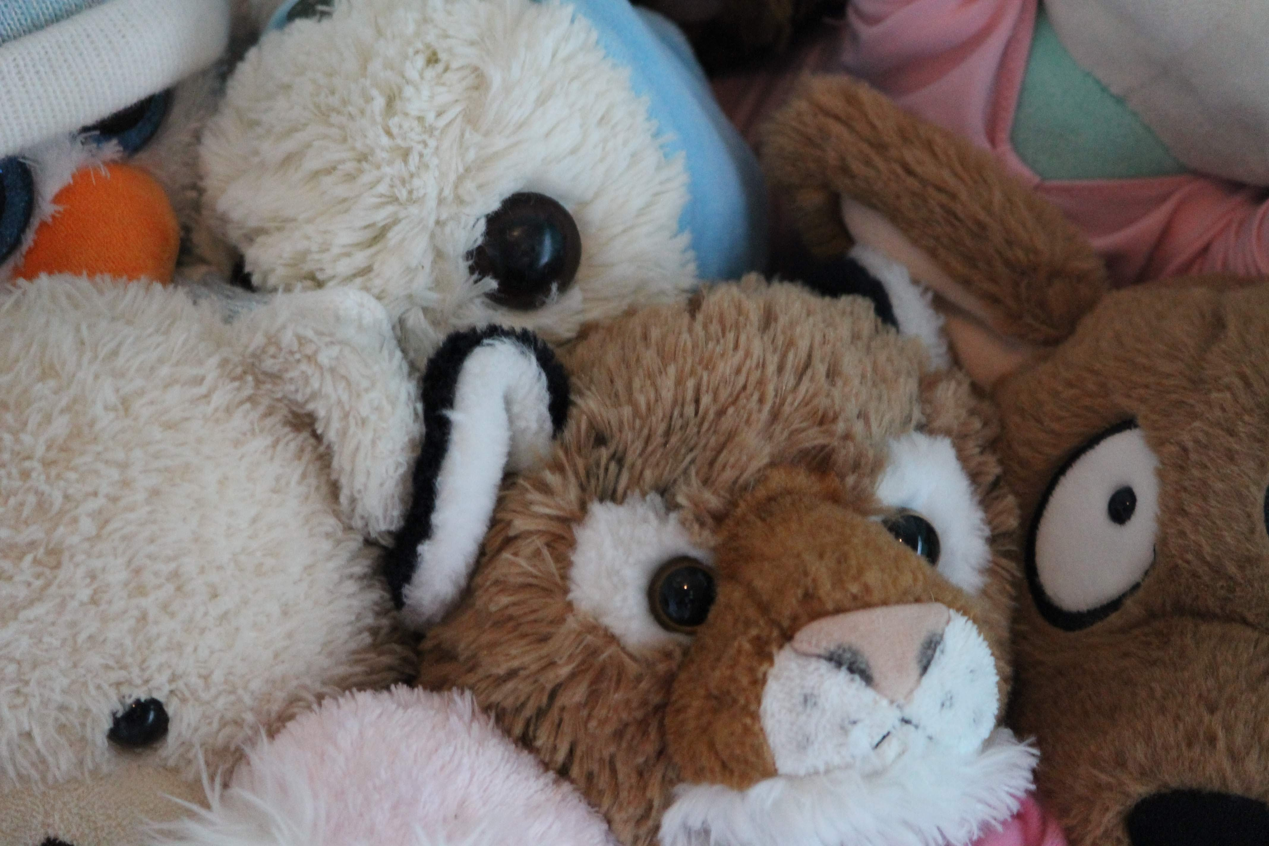 Kids DIY Stuffed Animals (Ages 0-8)