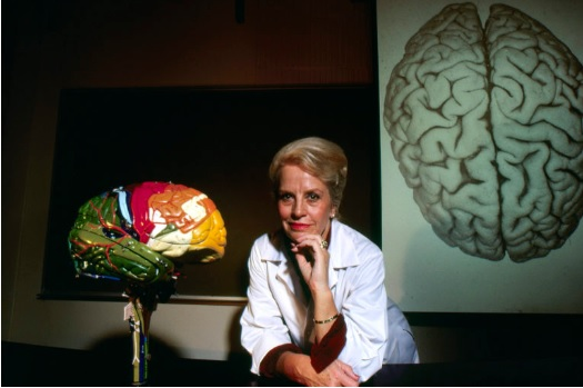 Albany FilmFest Presents...My Love Affair  With the Brain