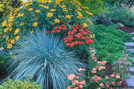 Sustainable Practices for Water-Wise Gardening