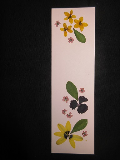Pressed Flower Crafts for Adults & Teens