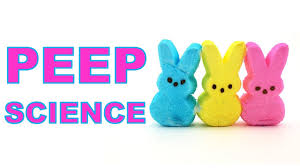 Science Fun with Peeps