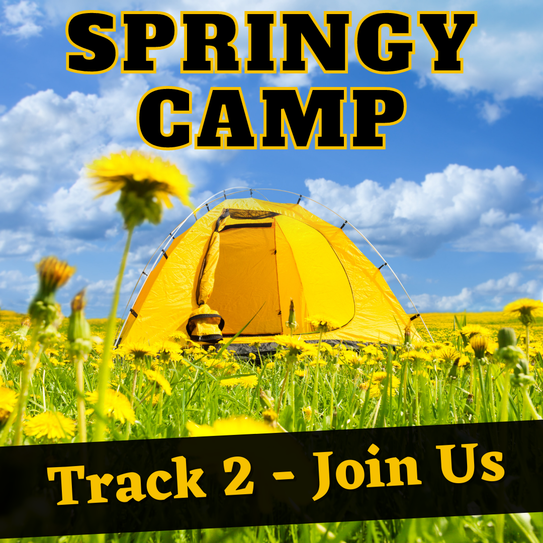 SpringyCamp Track 2 - What It Means to Be a Librarian in a Pandemic World