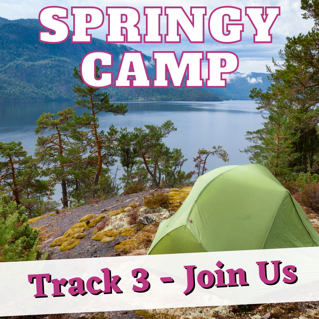 SpringyCamp Track 3: Hello Hybrid - Rethinking working environments and patron services
