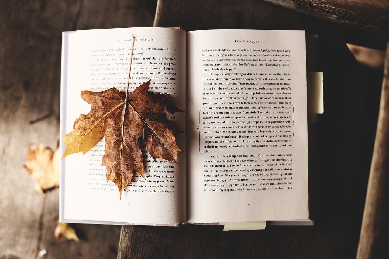 Lancaster Fall Reading Log (online)