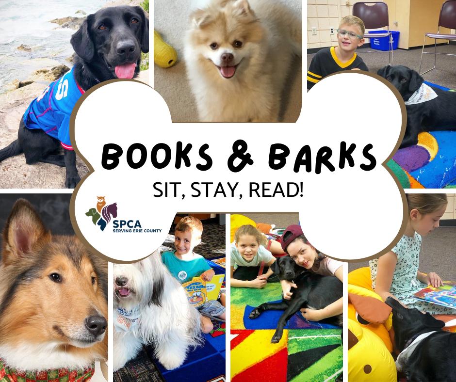 Books & Barks: Dog Days of Summer