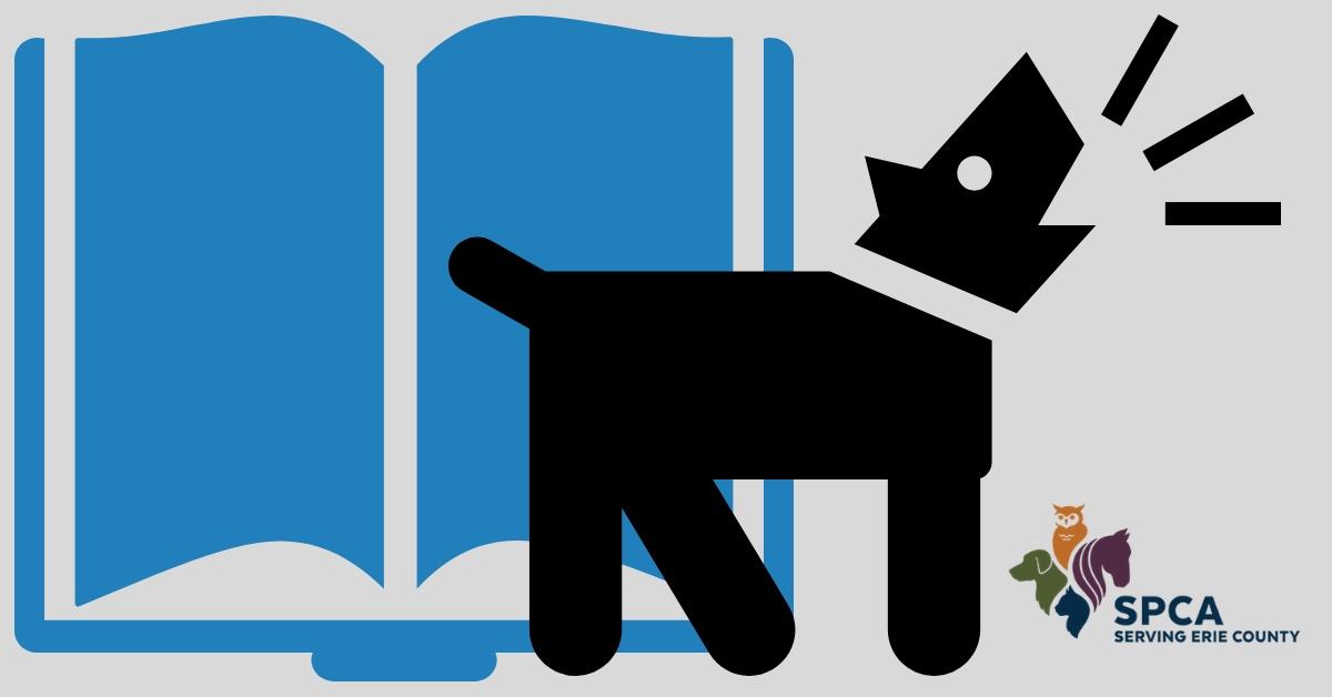 Books & Barks