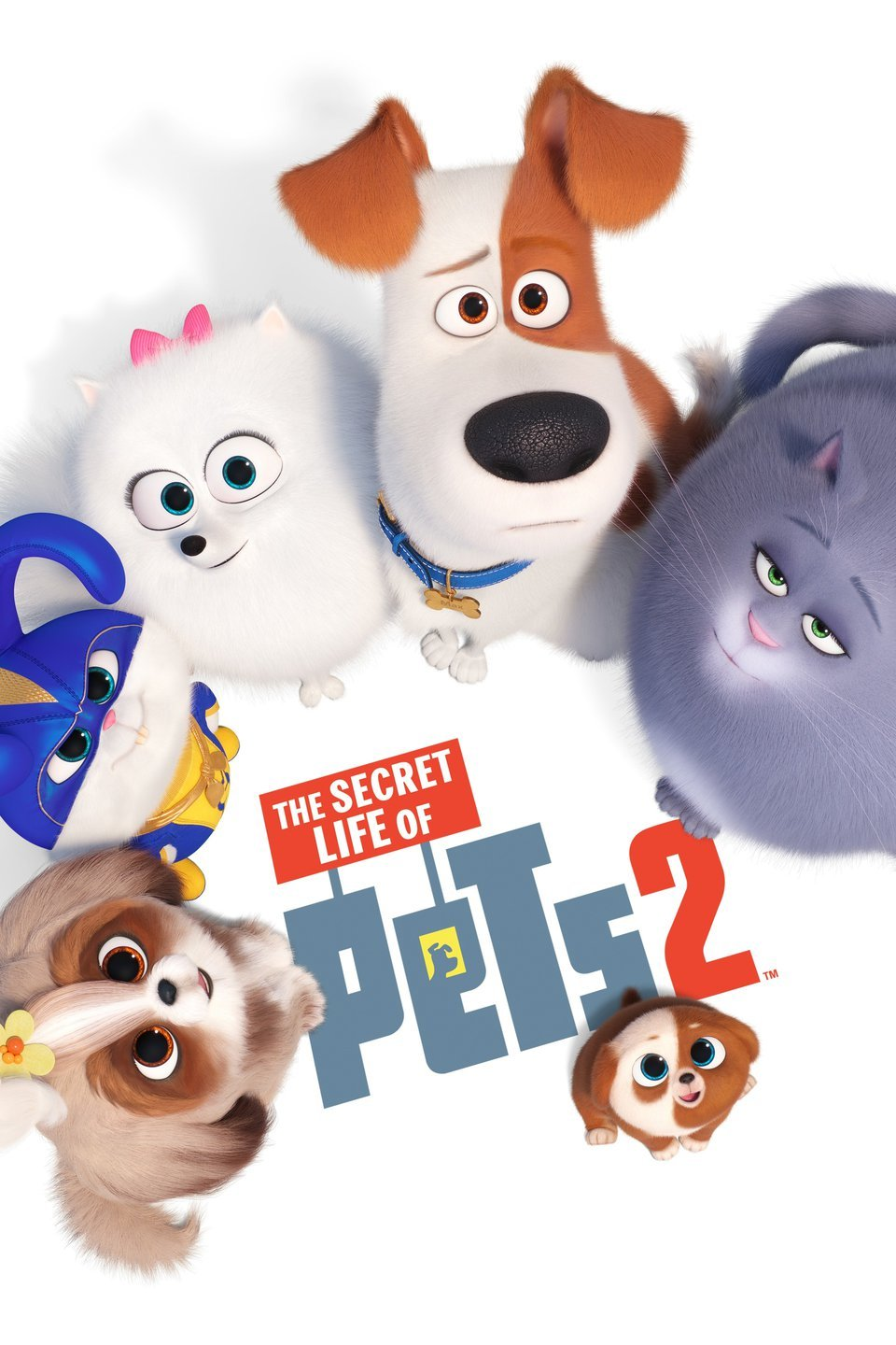 Family Movie: The Secret Life of Pets 2