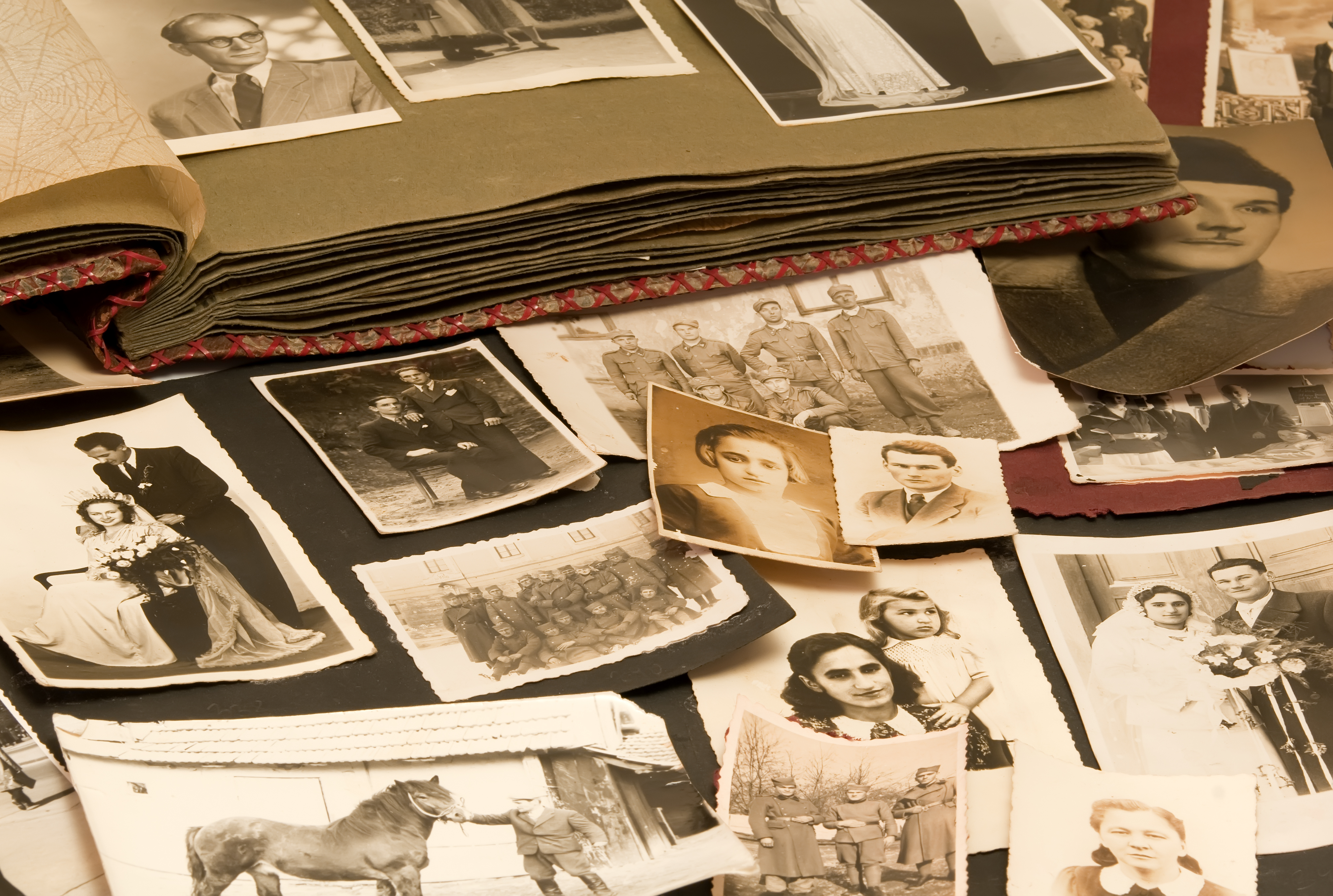 Jump into Genealogy: A Beginner's Workshop--Class 6: This Is Just the Beginning