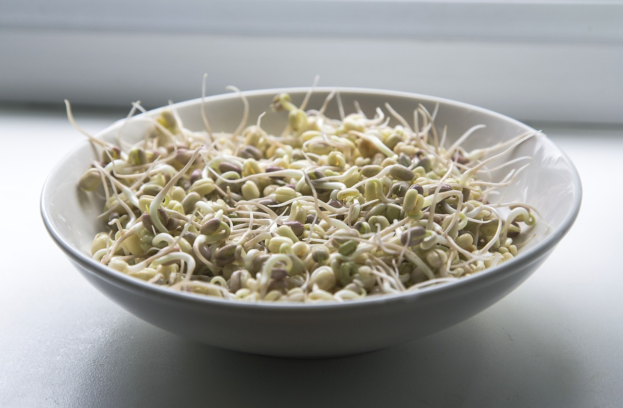 Enhancing Whole Grains and Legumes by Sprouting