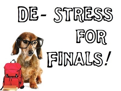 Furry Friends For Finals