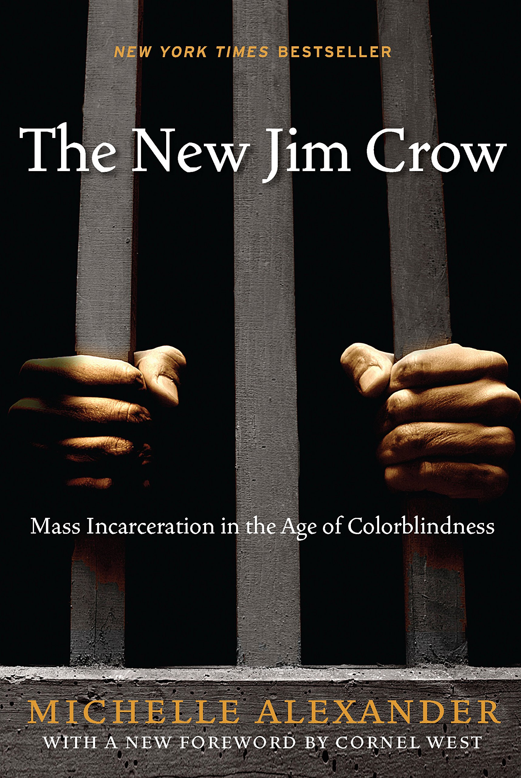 Book Discussion:  The New Jim Crow:  Mass Incarceration in the Age of Colorblindness by Michelle Alexander