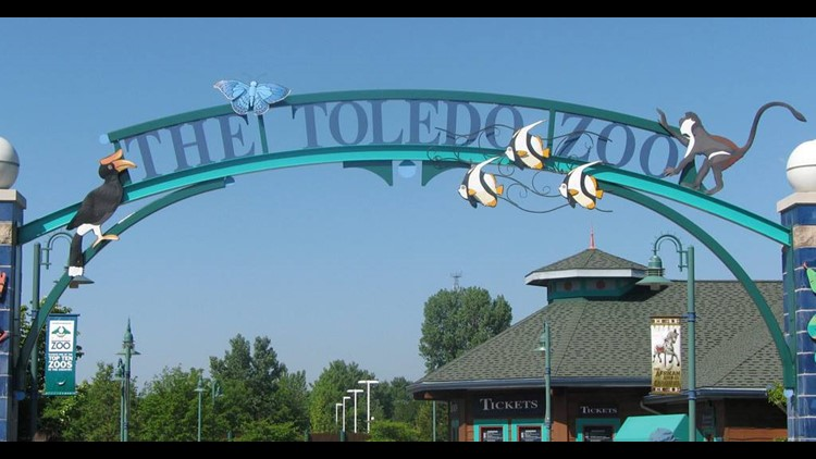 Tails and Tales with the Toledo Zoo