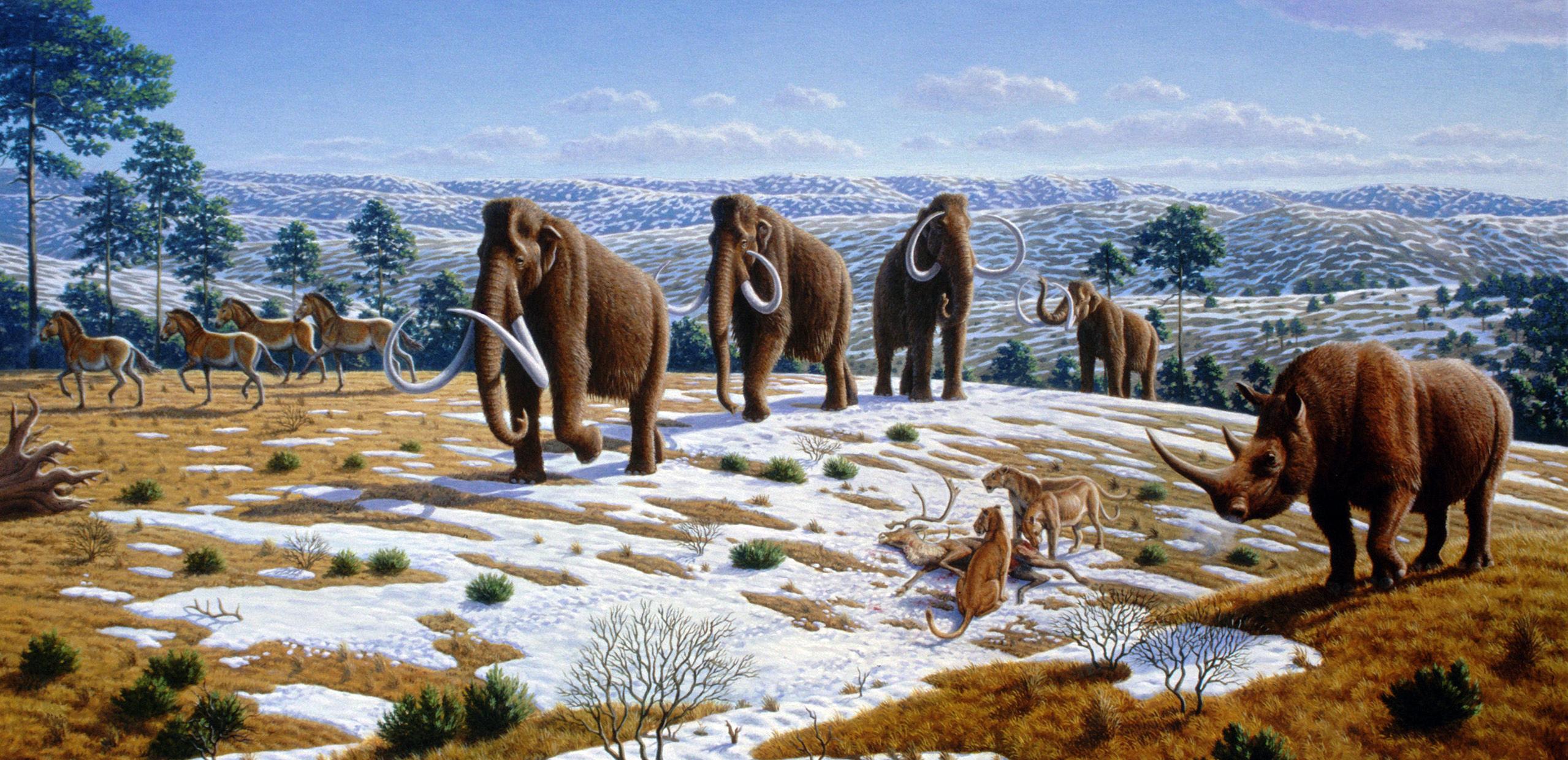 Ohio Ice Age Animals