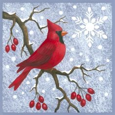 Feed the birds in winter