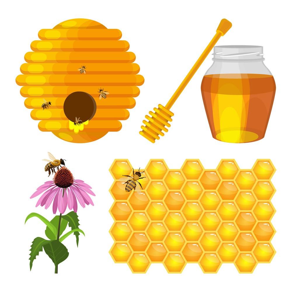 Virtual Program: Preparing Your Bees for Winter