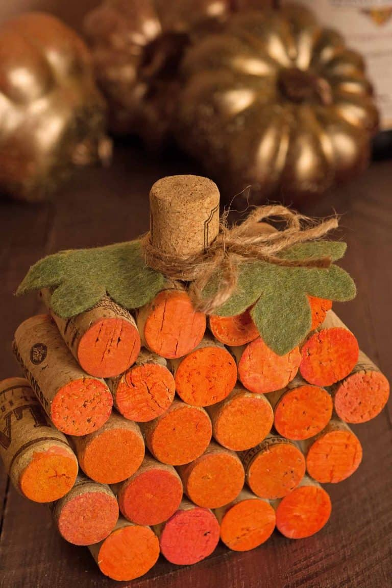 ADULT CORK PUMPKIN CRAFT