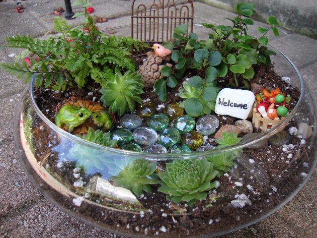 Garden Arts for Adults: Succulent Fairy Gardens