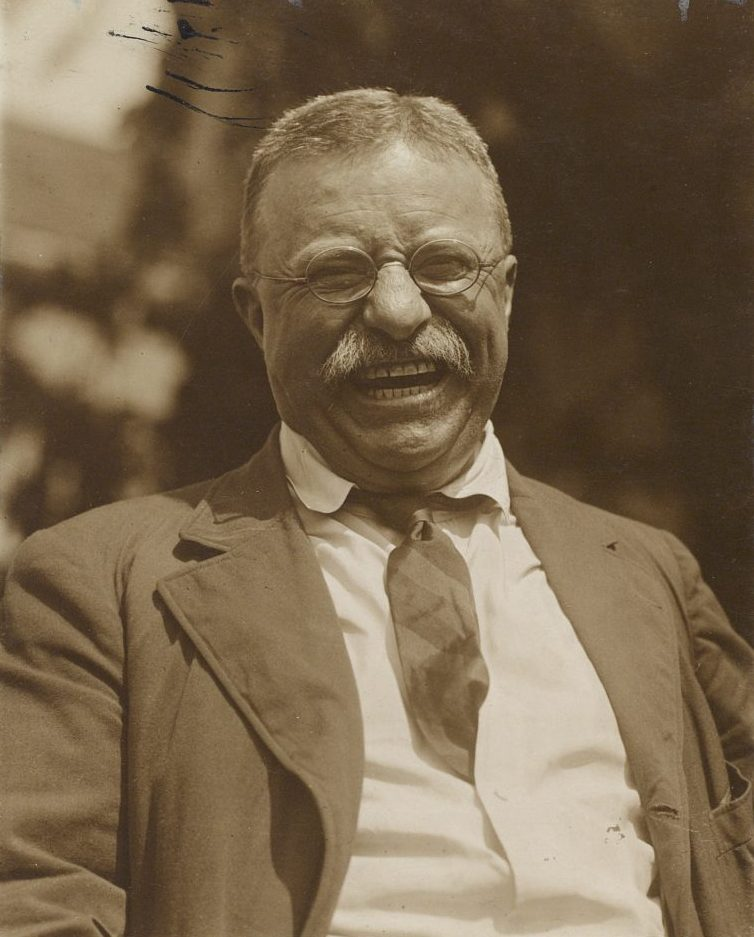 Theodore Roosevelt: American in the Arena