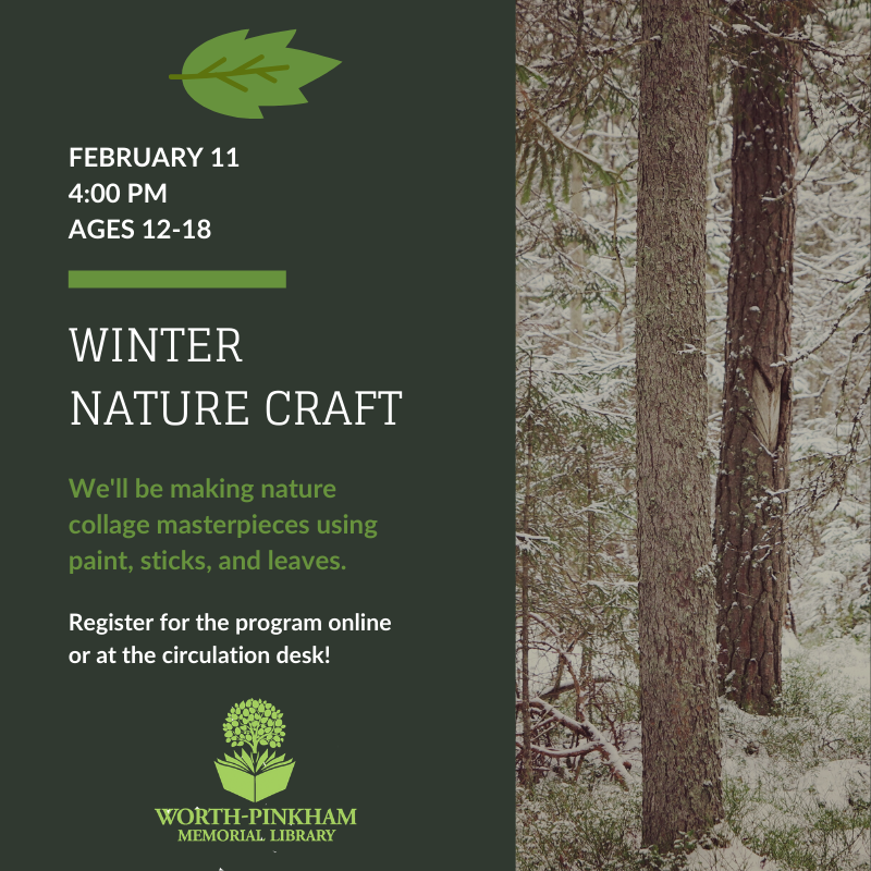 Winter Nature Craft