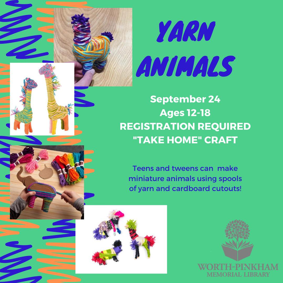 TAKE HOME TEEN Yarn Animals