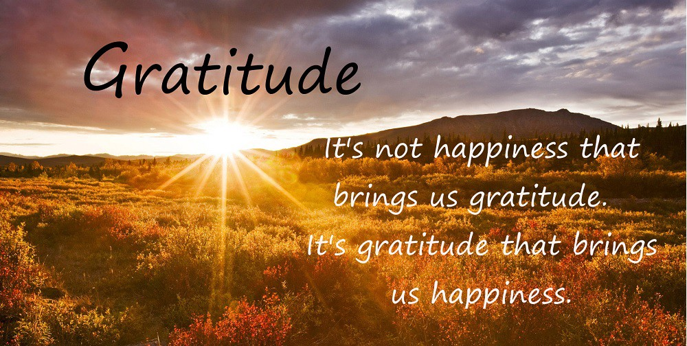 Gratitude Workshop: harnessing the power of gratitude to heal and grow