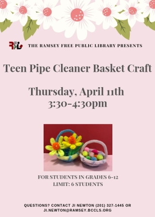 Teen Pipe Cleaner Craft