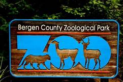 Storytime with Bergen County Zoo:  Is Your Buffalo Ready for Kindergarten?