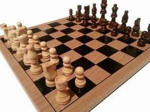 Brainyak Beginner Chess Classes