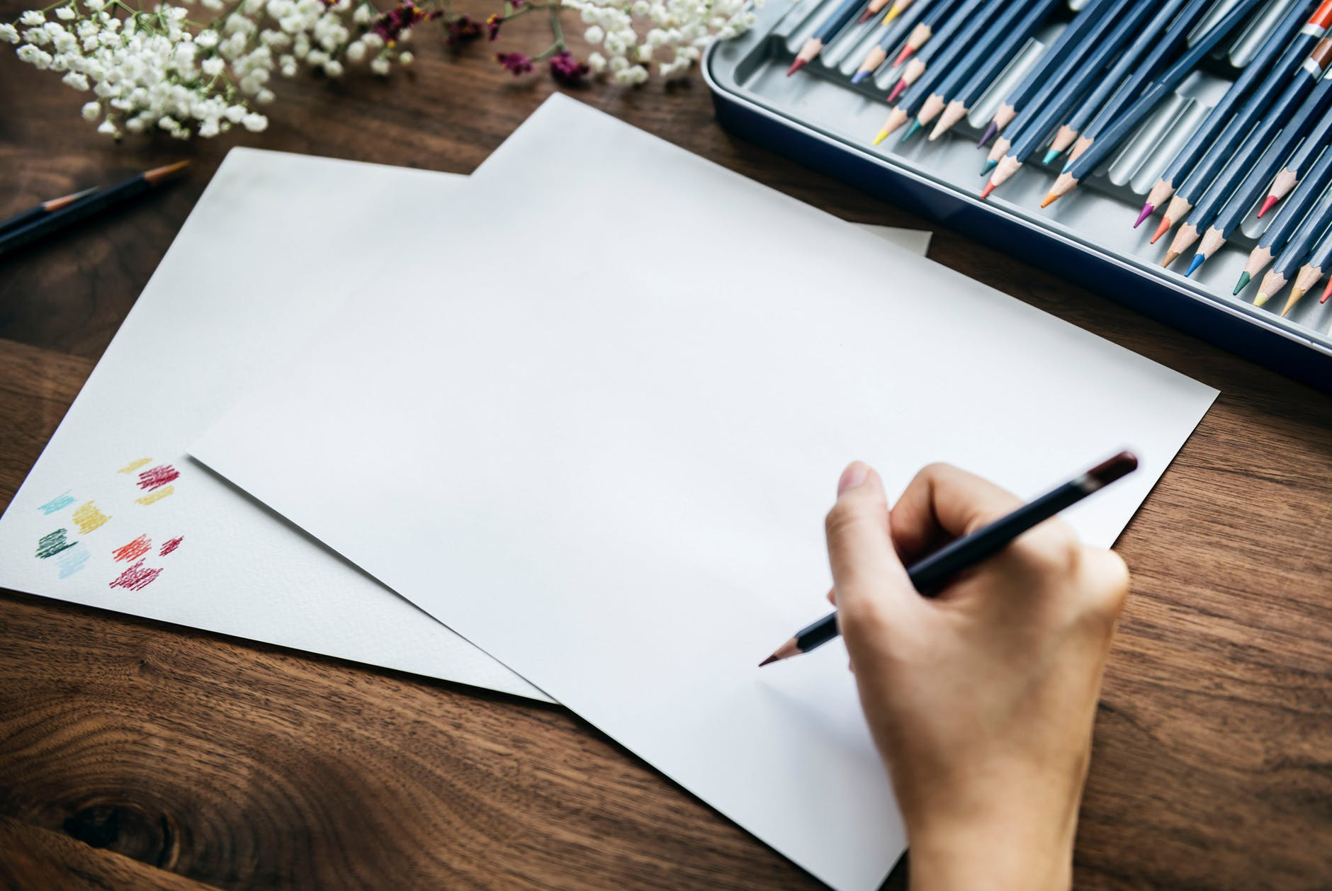 Illustrator Workshop