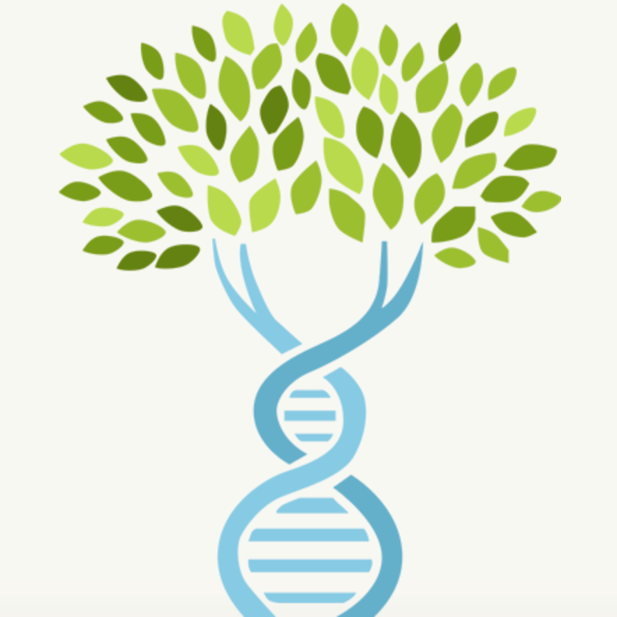 DNA and Genealogy: New Features Using Genetic Affairs