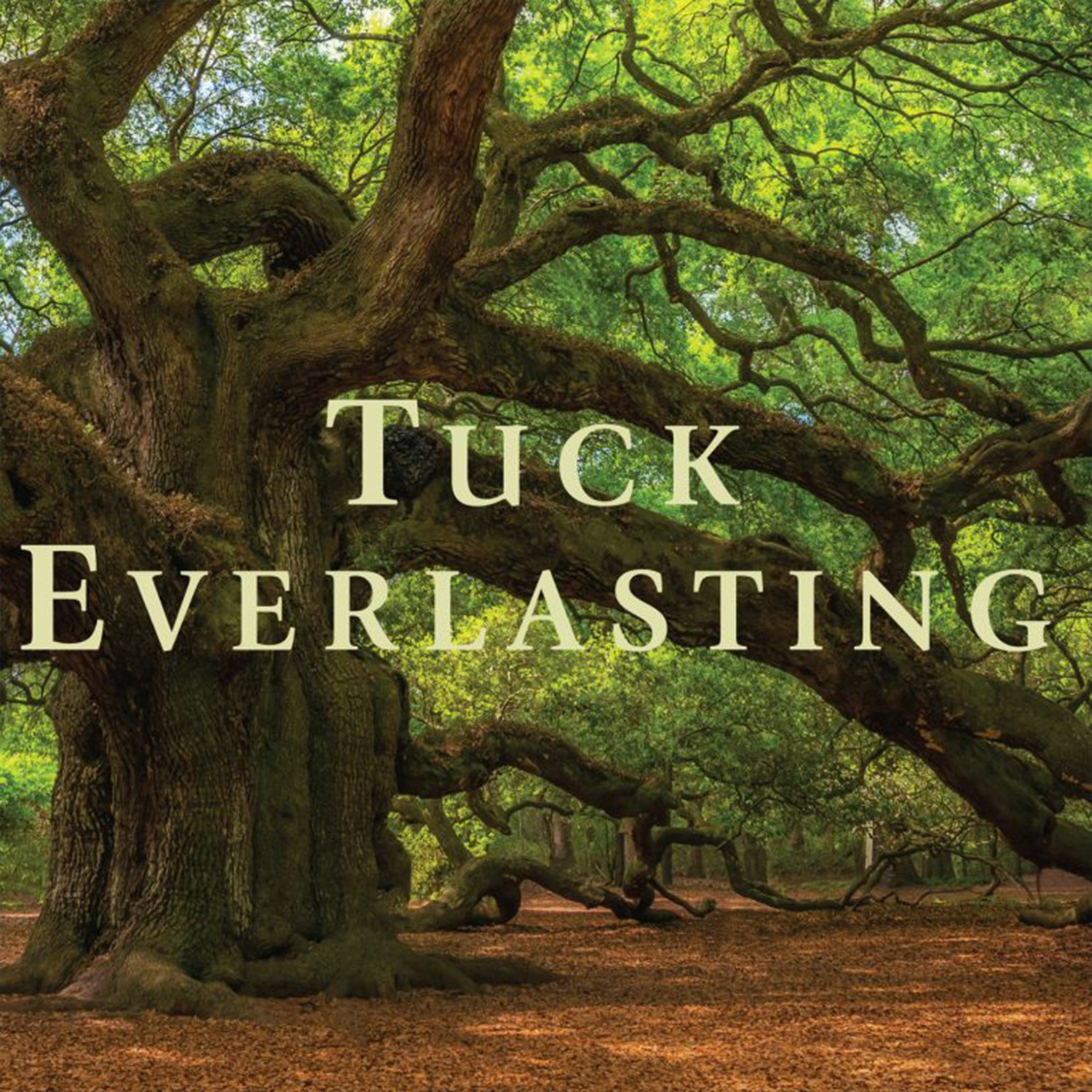 Word Warriors Book Club - Natalie Babbit's Tuck Everlasting