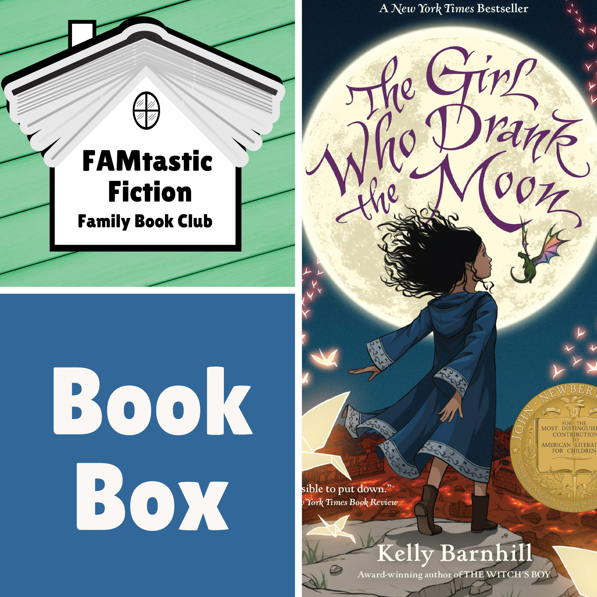 FAMtastic Fiction Book Box - The Girl Who Drank the Moon