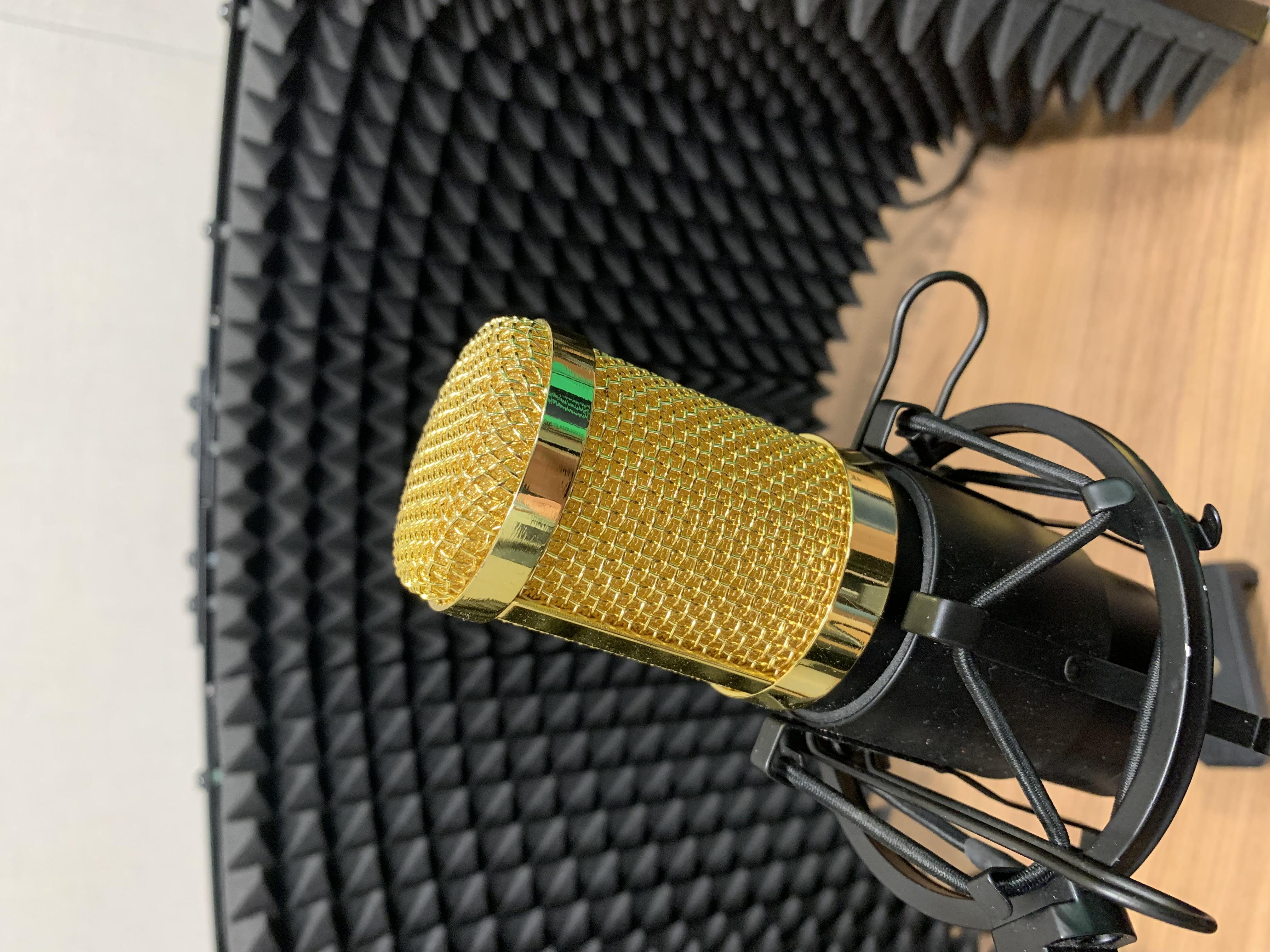 Hands-On Audio Recording