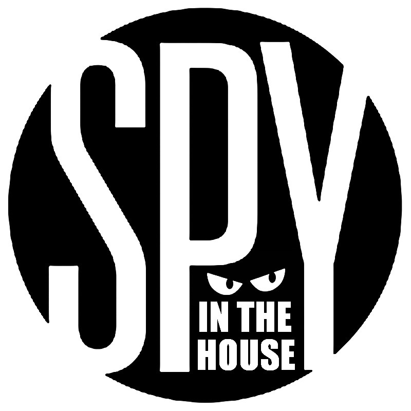 Secret Agent Camp