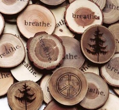 Woodburning 101