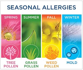 Seasonal Allergies: Questions Answered by Pharmacists