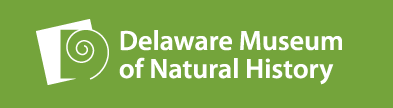 Pajama Time with the Delaware Museum of Natural History