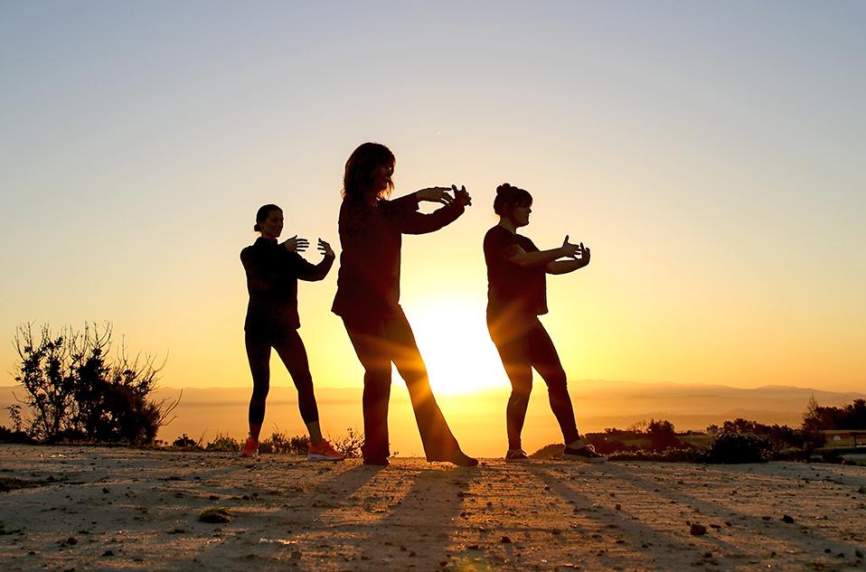 Tai Chi Chih-Joy Through Movement Practice Series