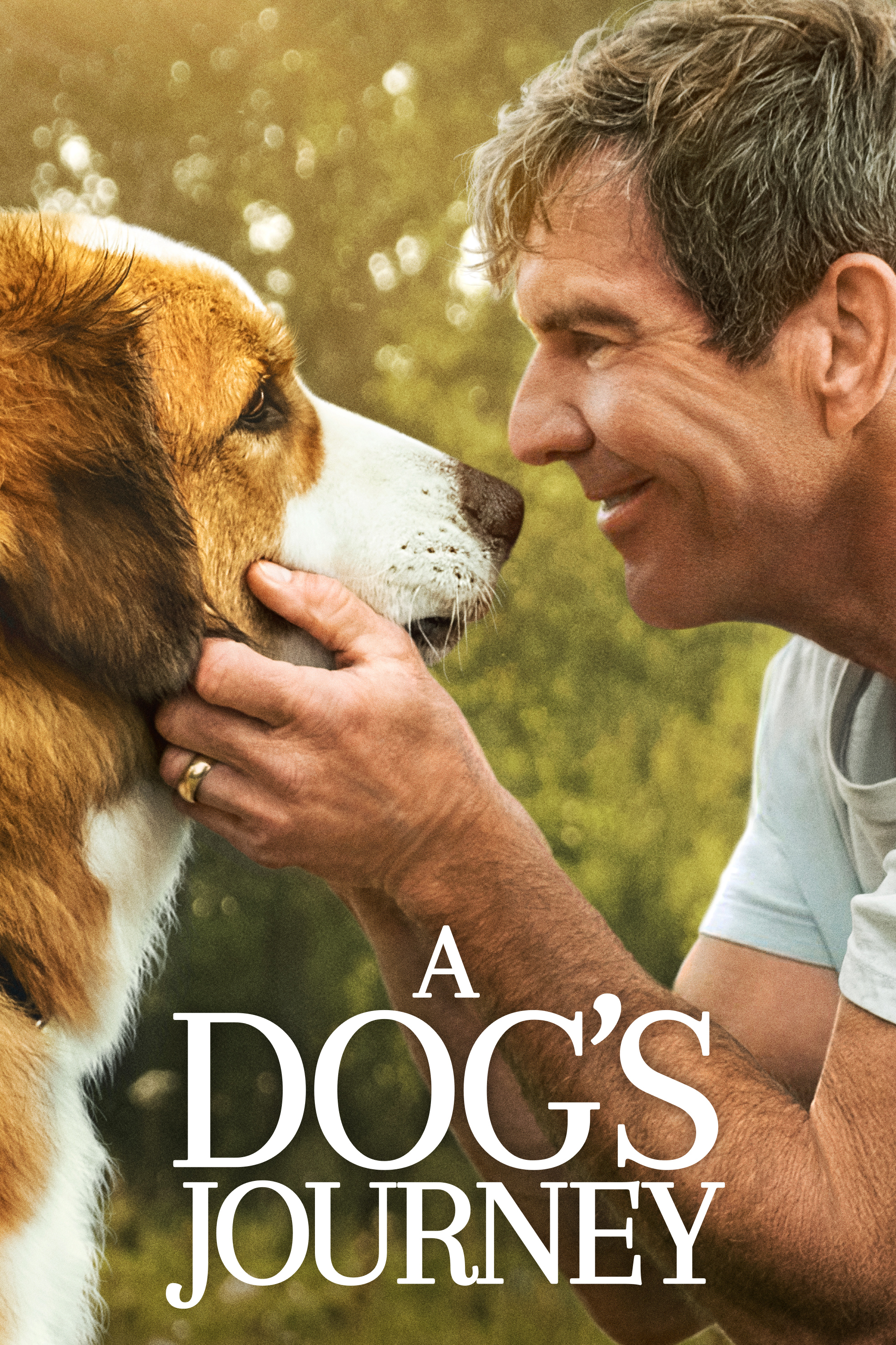 Movies @ Middletown: A Dog's Journey
