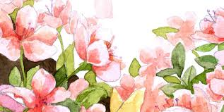 Watercolor Painting Class for Adult Beginners - CANCELLED