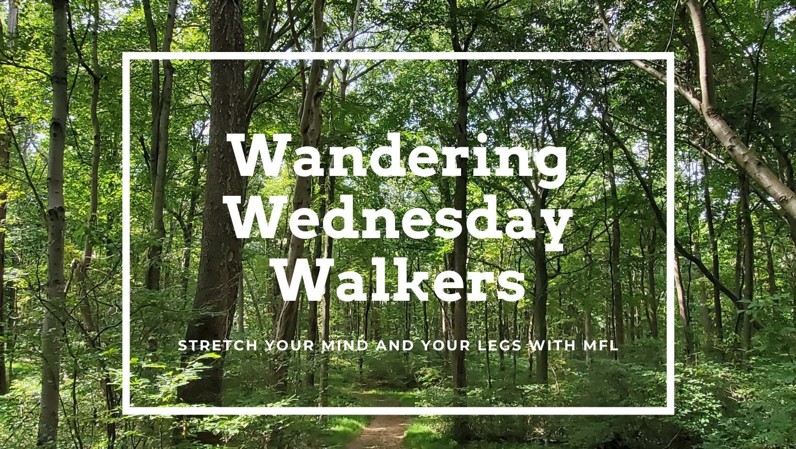 Wandering Wednesday Walkers
