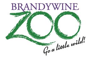 BrandyWine Zoo Virtual Story Time