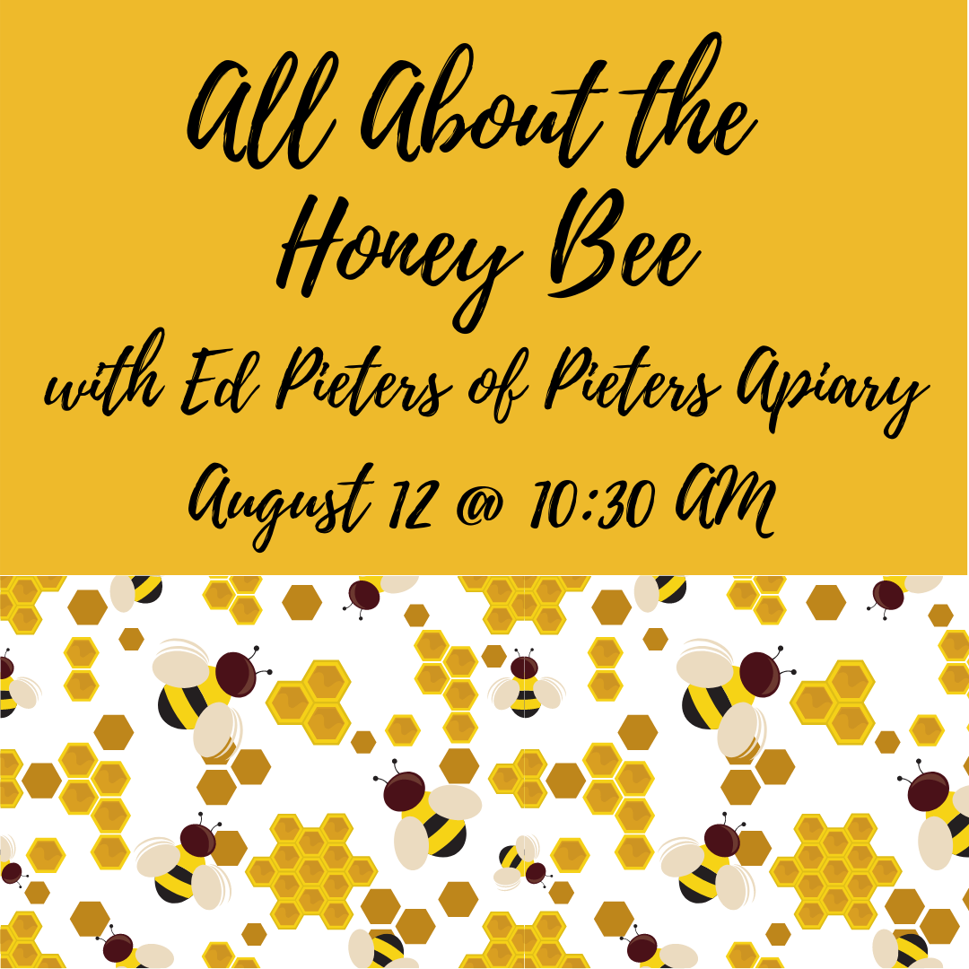 All About the Honey Bee