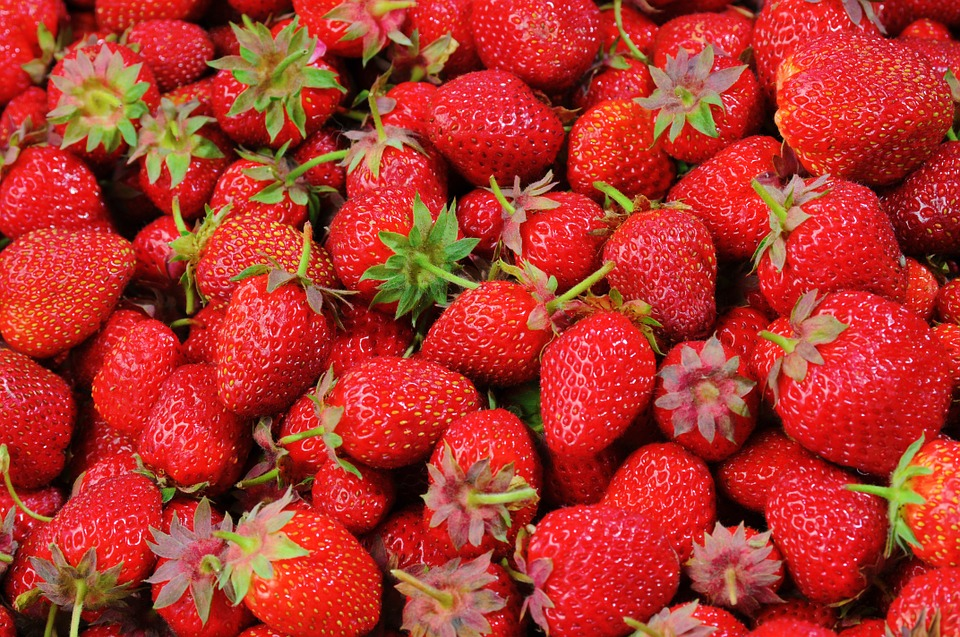 Make Your Own Country Wine: Strawberry