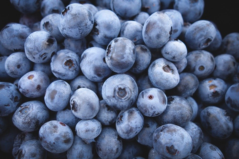 Make Your Own Country Wine: Blueberry