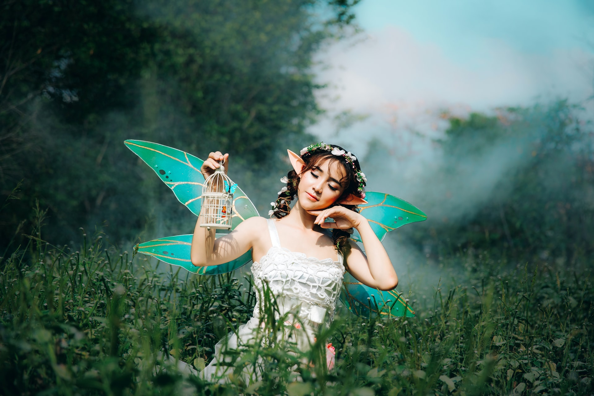 CREATE Space - Fairy Wings
